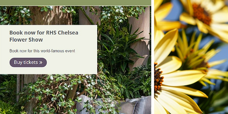 May marketing themes RHS Chelsea Flower Show