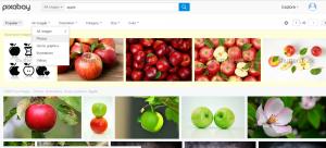 pixabay search criteria